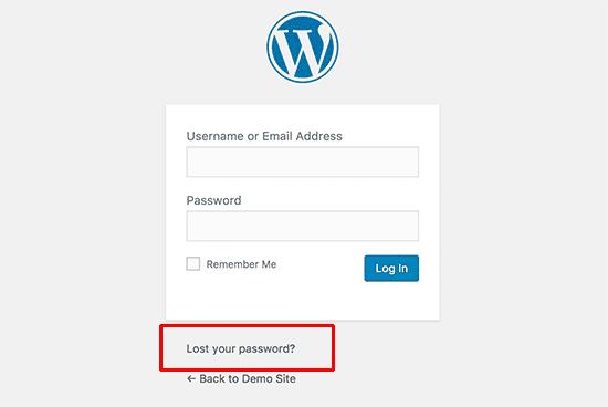 forgot my wordpress password