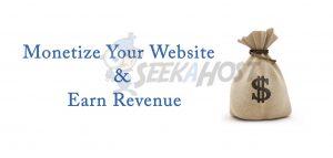 Monetize Your Website & Earn Revenue