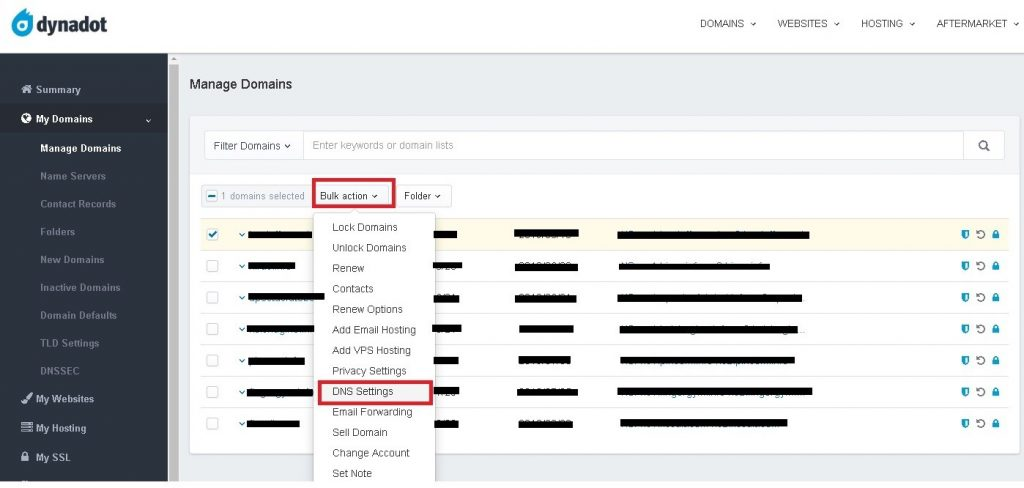 DNS Settings - DynaDot Private Nameserver