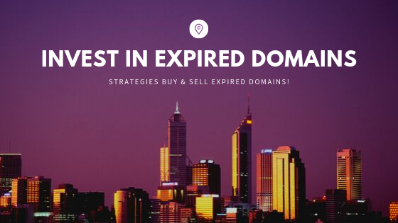 invest-in-expired-domains