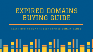 Expired-Domains-Buying-Guide
