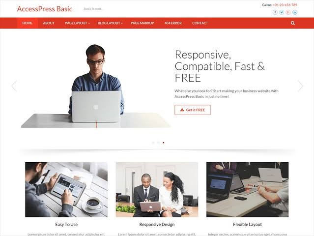 AccessPress Basic WordPress Free Theme