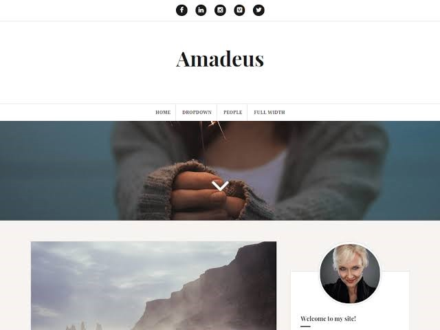 Amadeus Free WordPress Theme