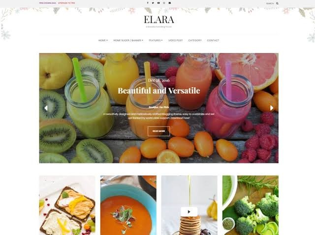 Elara Free Theme For WordPress