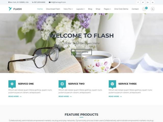 Flash WordPress Theme For Free