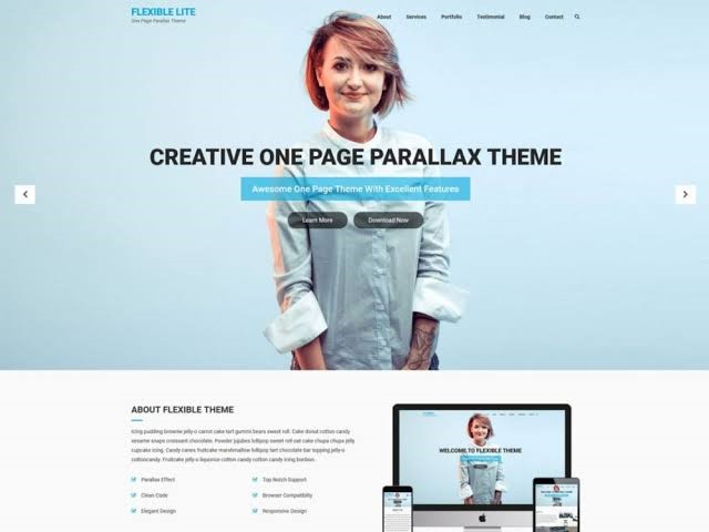 Flexible Lite WordPress Theme for Free