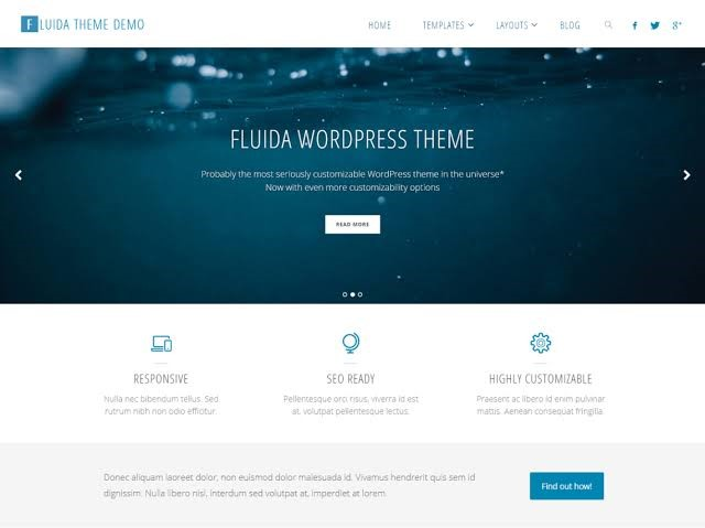 Fluida Theme For WordPress
