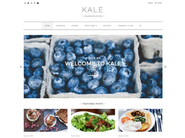 Kale - Free WordPress Theme