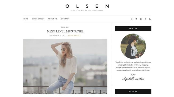 Olsen Light Free Theme For Lifestyle