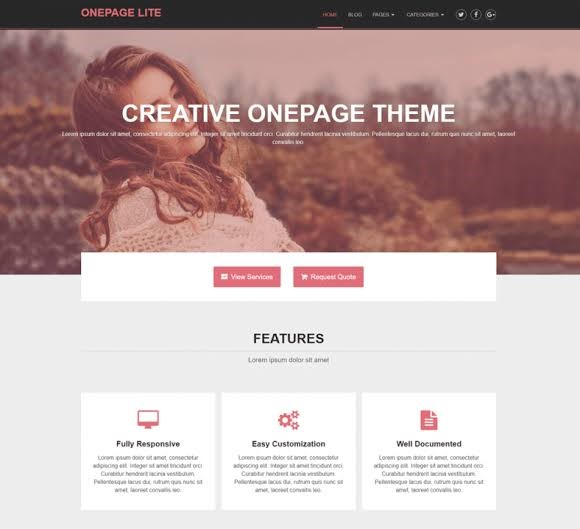 OnePage Lite - Free Wordpress Themes