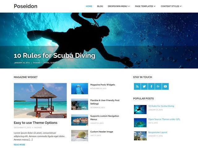 Poseidon WordPress Theme For Any Industry