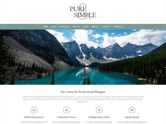 Pure & Simple Theme