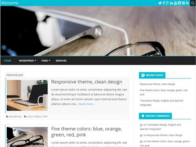 Ribosome Free WordPress Theme