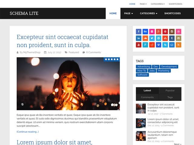 Schema Lite - Free WordPress Theme