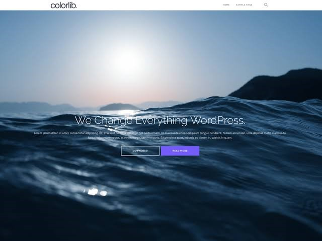 Shapely Theme for WordPress