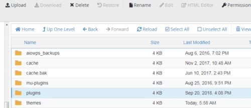 Rename the Plugins Folder