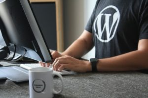 Wordpress website consultant