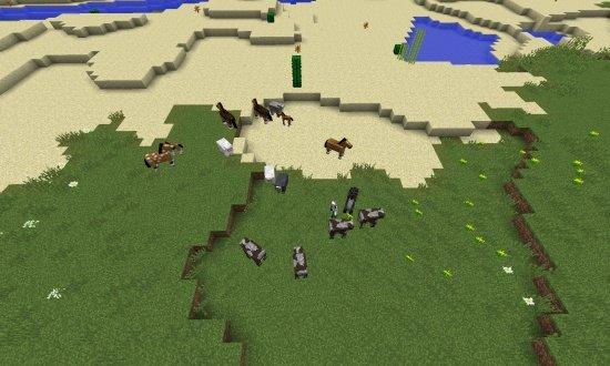 Horses and Desert Village