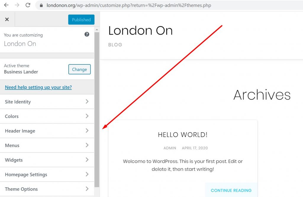 Theme Customization Options in WordPress