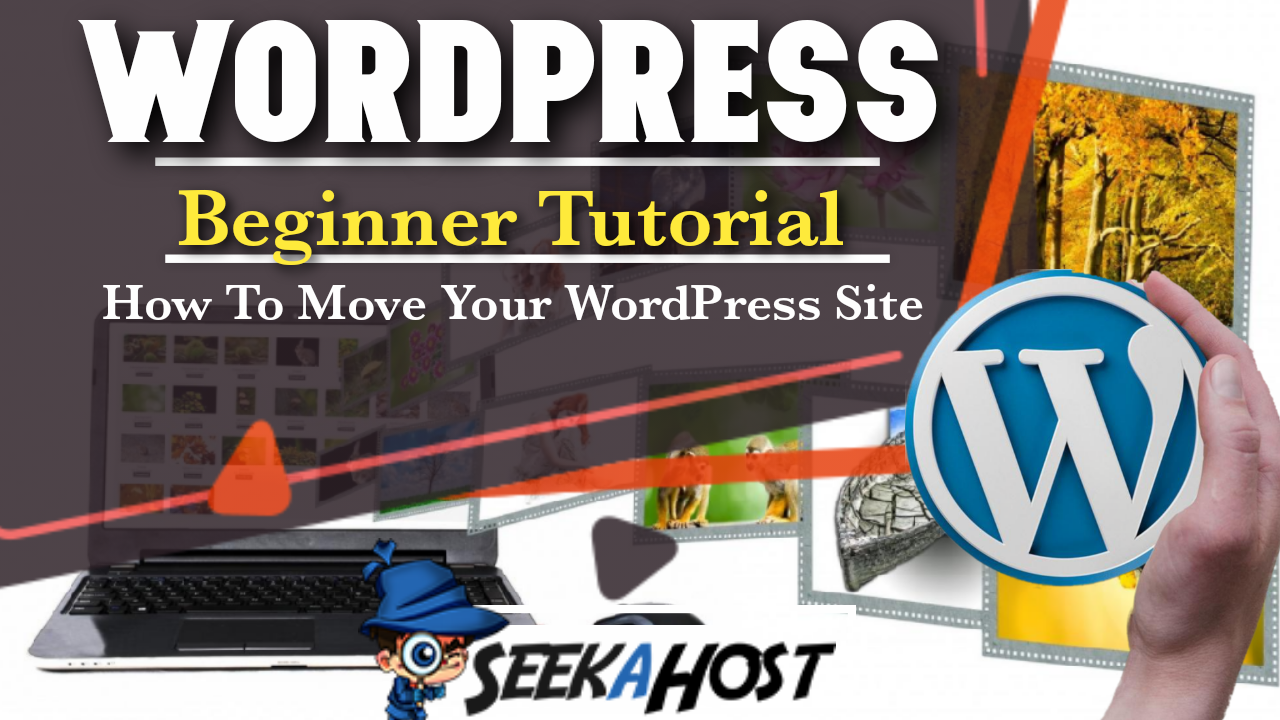 How To Move WordPress Hosting Plan to Another Plan