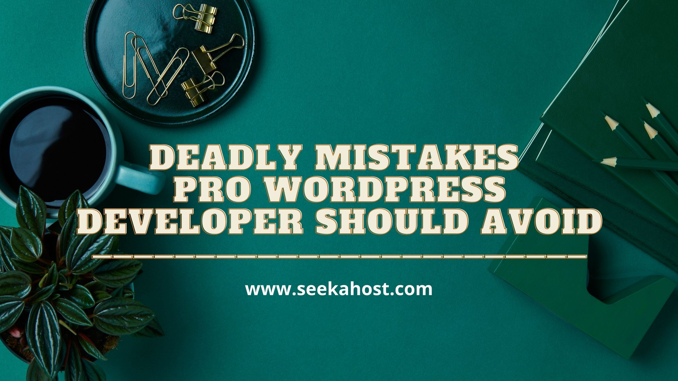 Wordpress developers mistakes