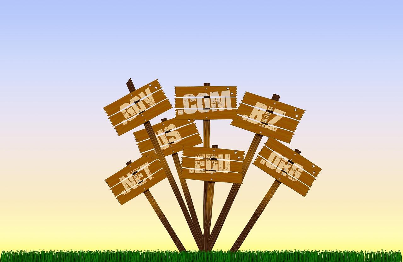 pbn domains